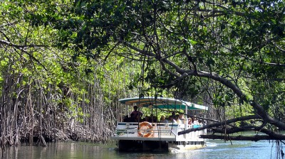 Black River Safari, Saint Elizabeth, Jamaica