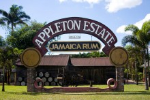Appleton Estate, Saint Elizabeth, Jamaica